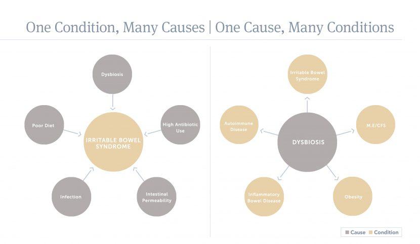 Functional Medicine Model Naturopathy