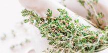 Naturopathy, Naturopath, Herbs, White Marble Pestle & Mortar
