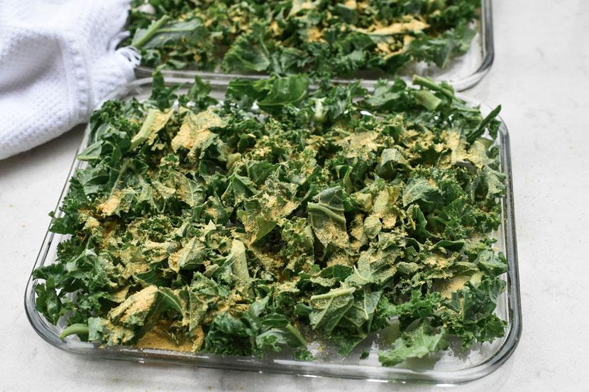 Vegan-Cheesy-Kale-Crisps